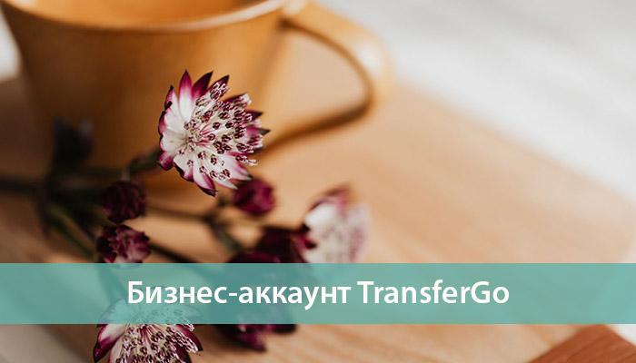 бизнес аккаунт transfergo