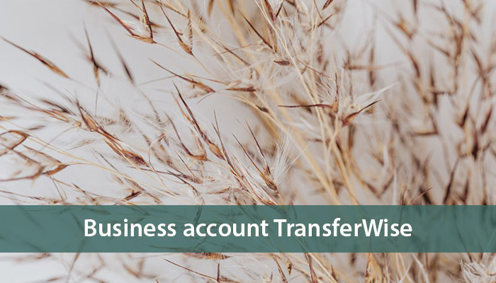business account transferwise