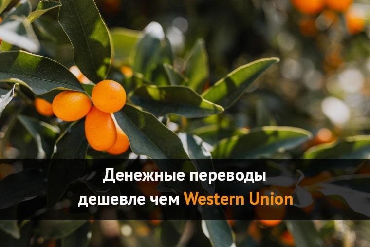 дешевле чем western union