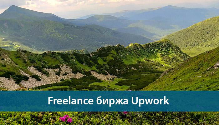 freelance upwork