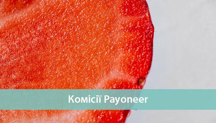 платіжна система payoneer