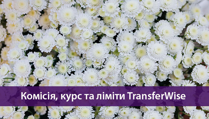 комісія Трансфервайс