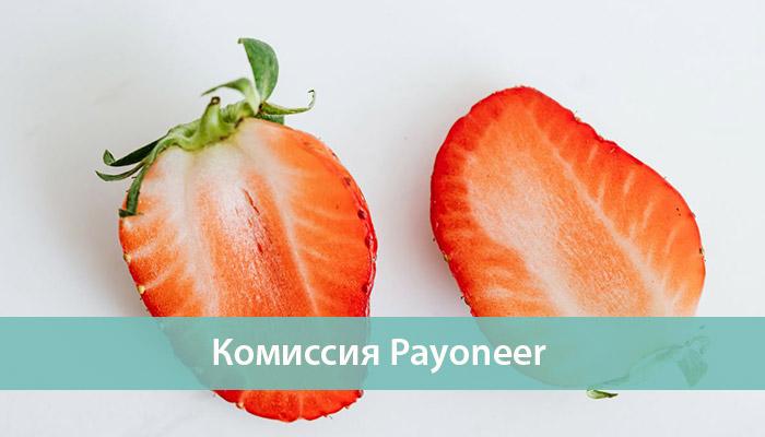 комиссия payoneer