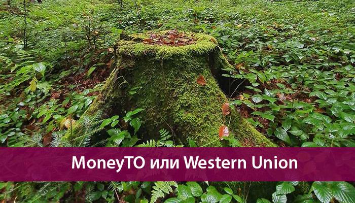 moneyto western union