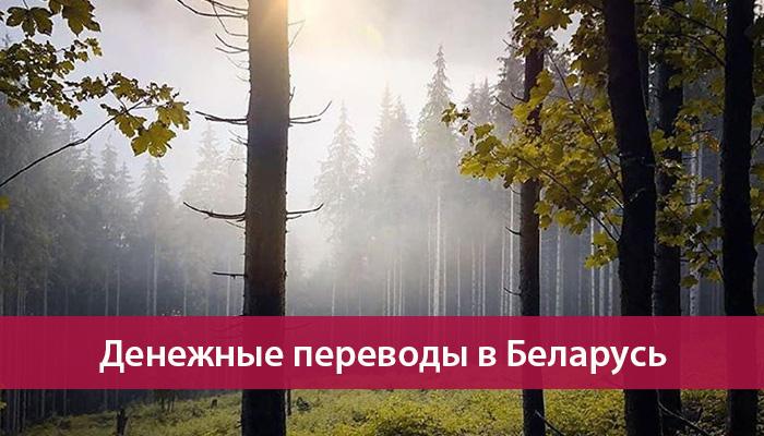 perevesti dengi v belarus