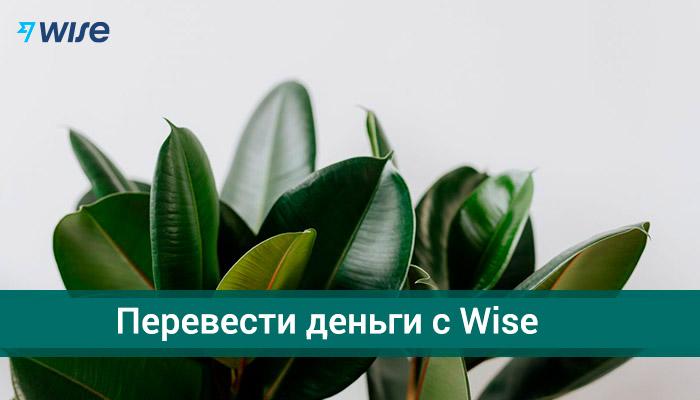 Как перевести деньги с Wise