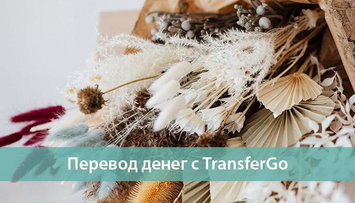 Денежные переводы TransferGo