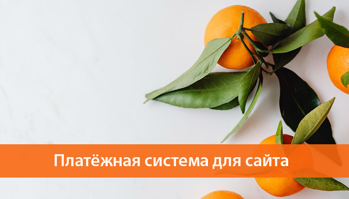 platezhnaya sistema dlya nternet magazina ukraina
