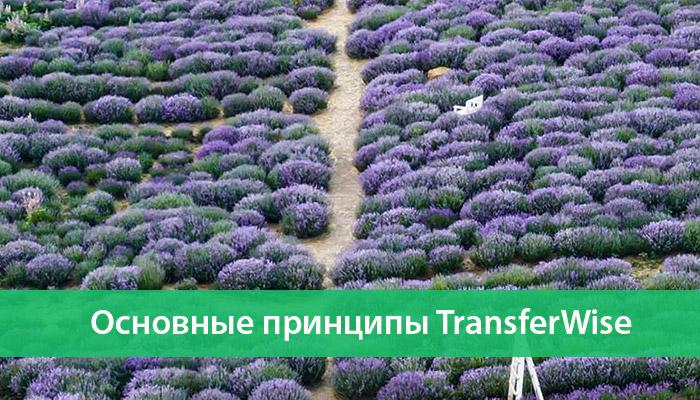 principy transferwise