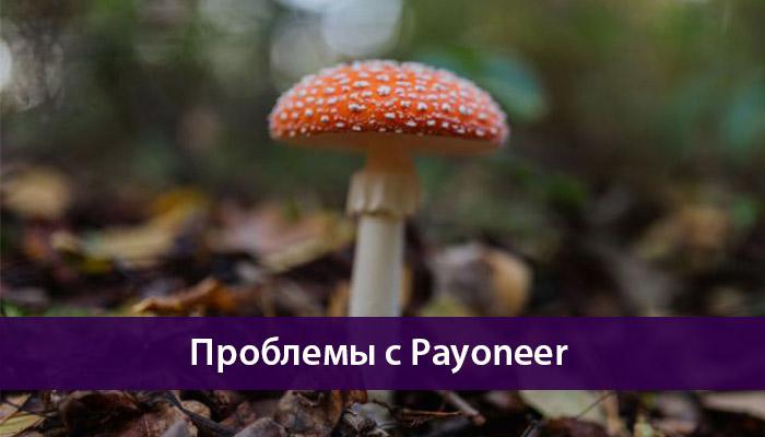 проблемы payoneer