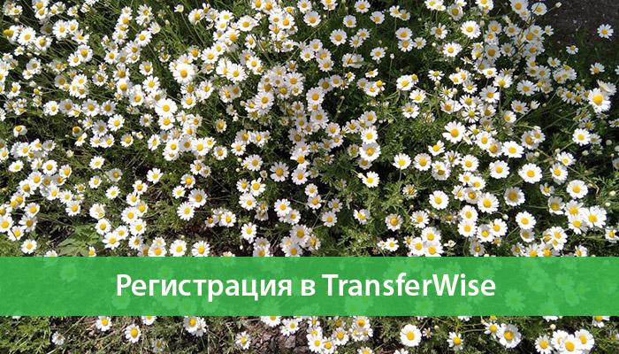 registracziya tranferwise v rossii
