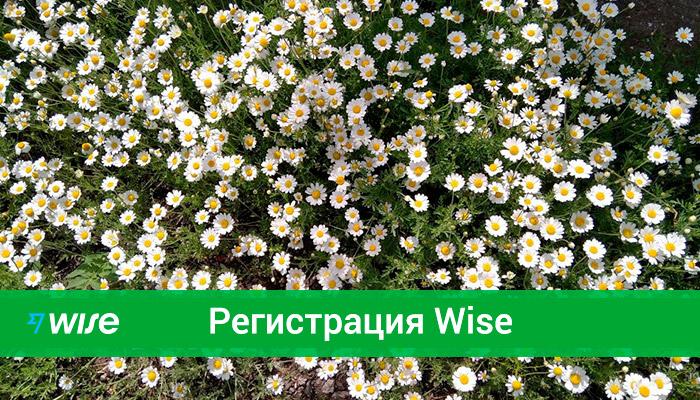 Как зарегистрироваться в Wise