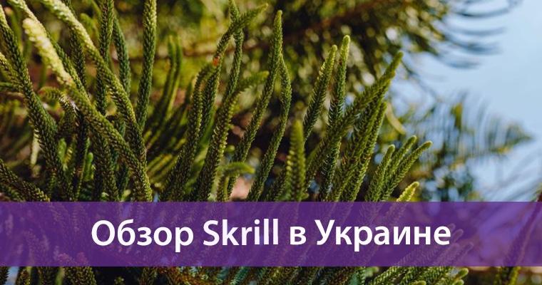 skrill в Украине