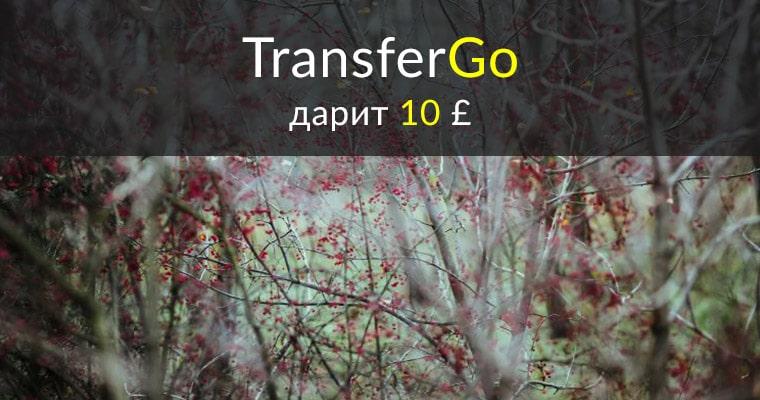 Трансфер Го дарит 10 фунтов