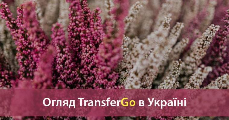 transfergo в україні