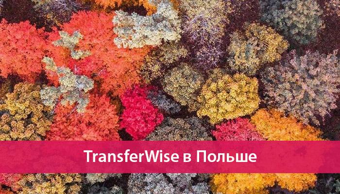 transferwise v polshe