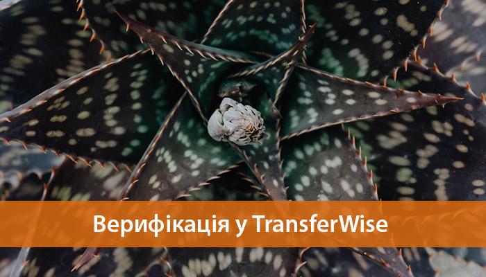 верифікація акаунту TransferWise